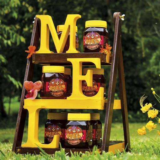 Mel de Flores Silvestres - Orgânico - Produção Familiar - Appis Mellifera, São paulo, SP