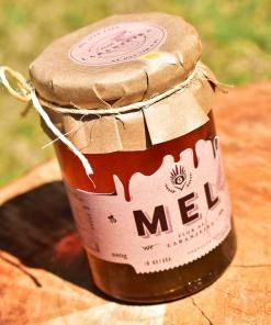 laranjeira-mel-abelha-puro-comprar-vender-sao-paulo-sp-pura-cura2_optimized