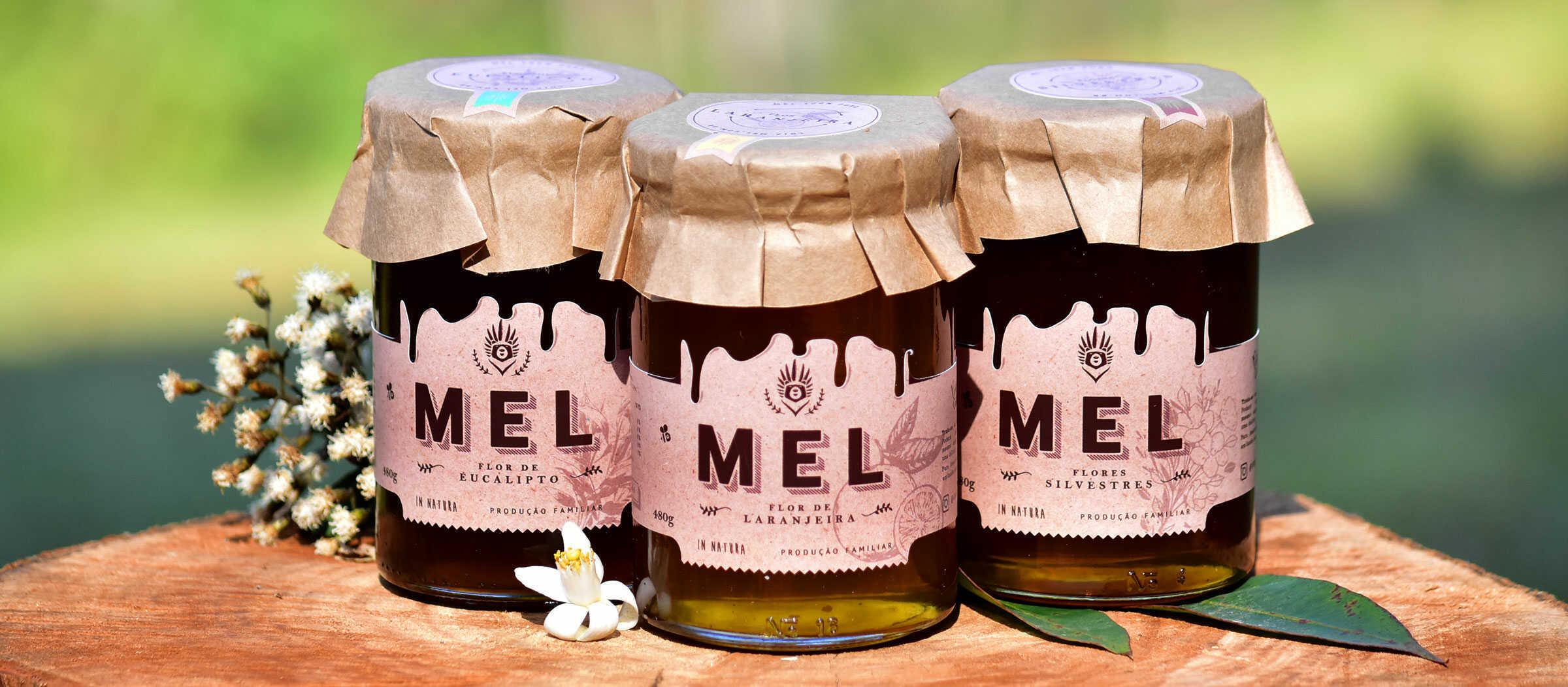 mel-abelha-puro-comprar-vender-sao-paulo-sp-pura-cura