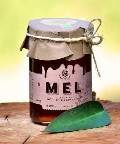 mel-eucalipto-abelha-puro-comprar-vender-sao-paulo-sp