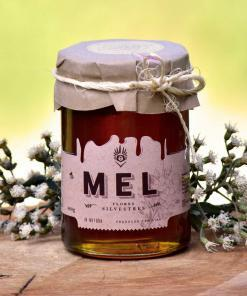 mel-flores-silvestres-abelha-puro-comprar-vender-sao-paulo-sp