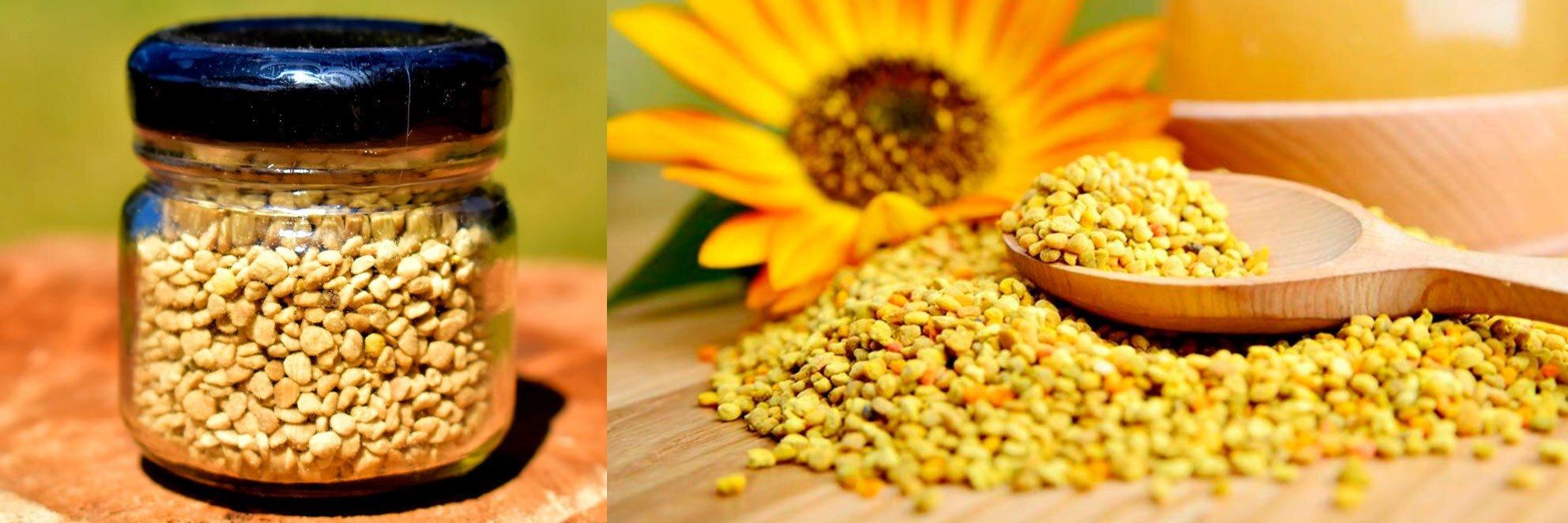 polen-apicola-desidratado-20g-mel