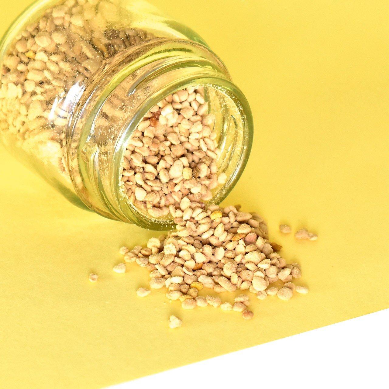 polen-apicola-desidratado