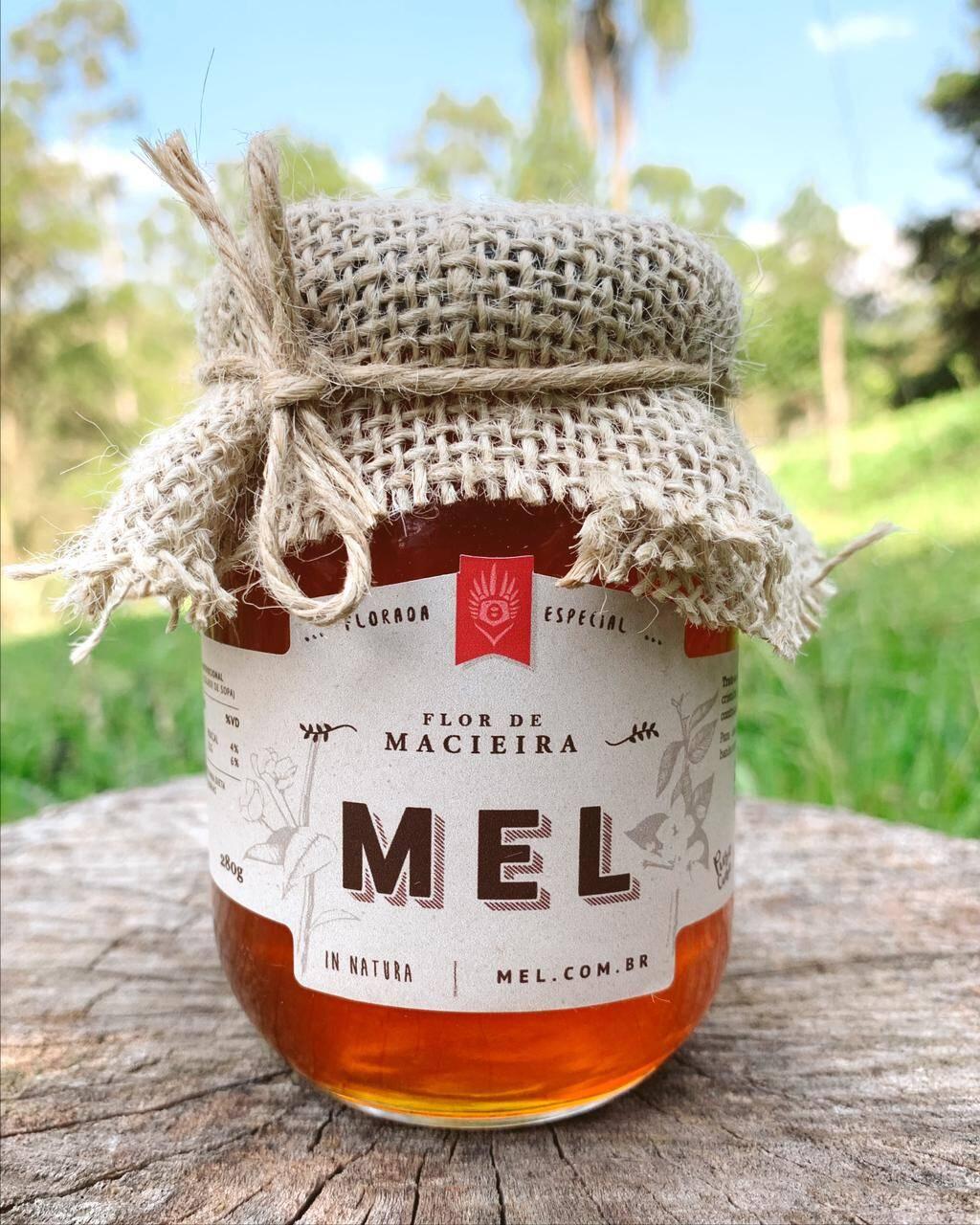 Flor de Macieira Mel Gourmet - Compre Mel puro na Loja do Mel!